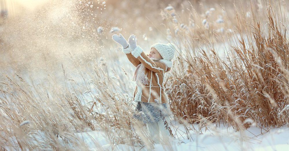 Winterklaar Maken Tuin : Je tuin winterklaar maken doe je zo ik woon fijn