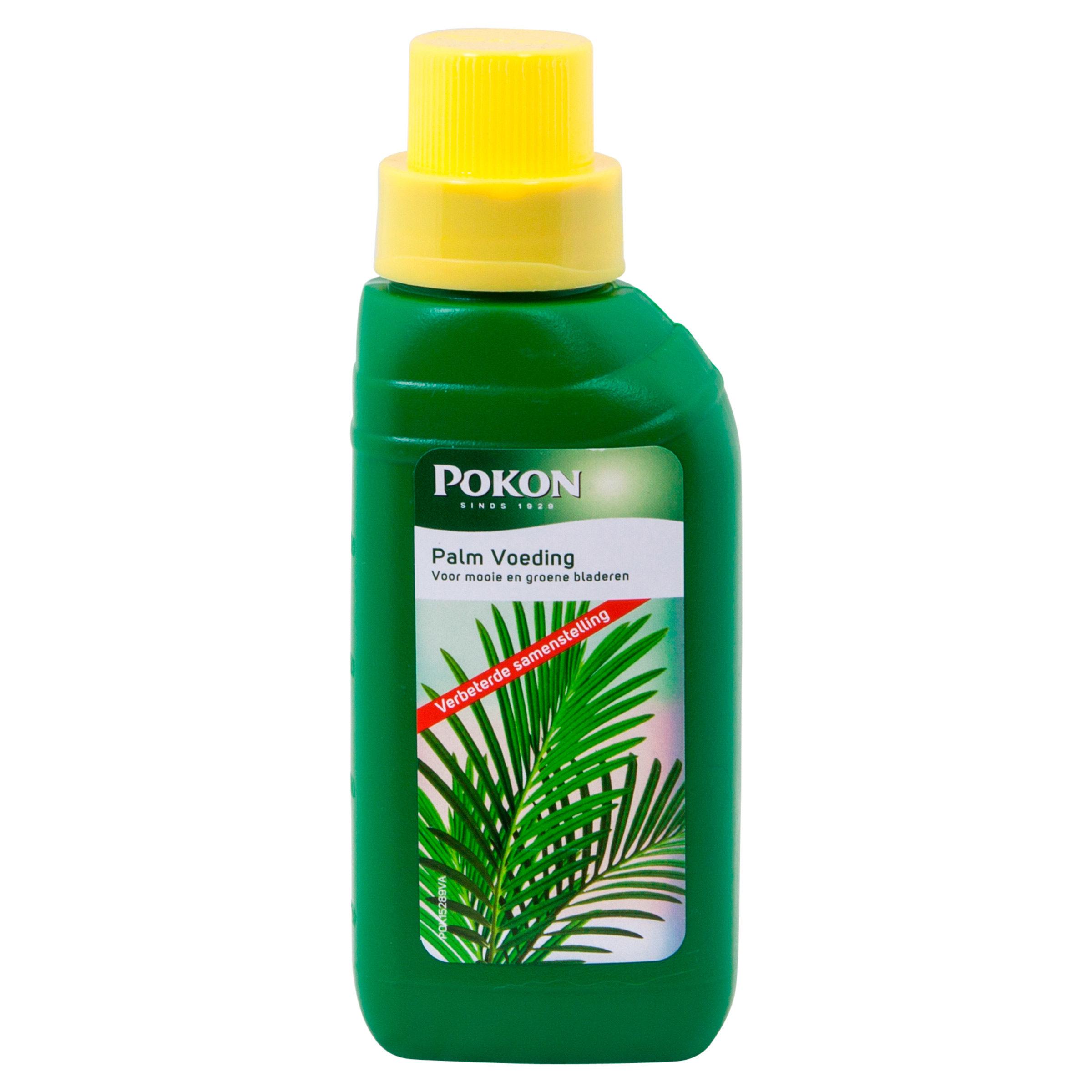 Pokon Palm Voeding 250ml voorkant