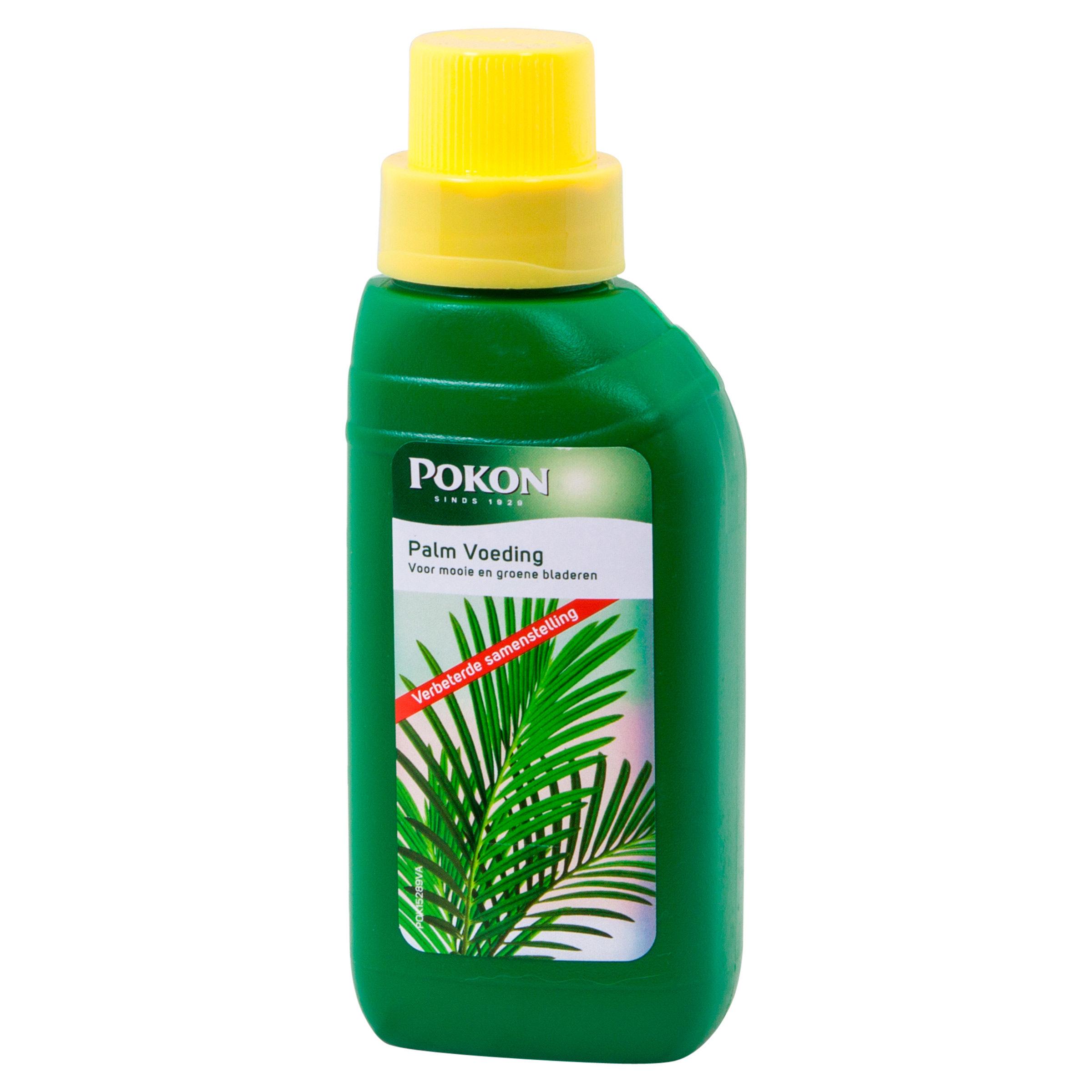 Pokon Palm Voeding 250ml rechts