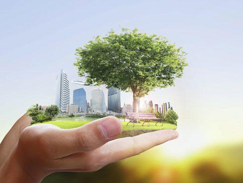 Beleid voor verduurzamen