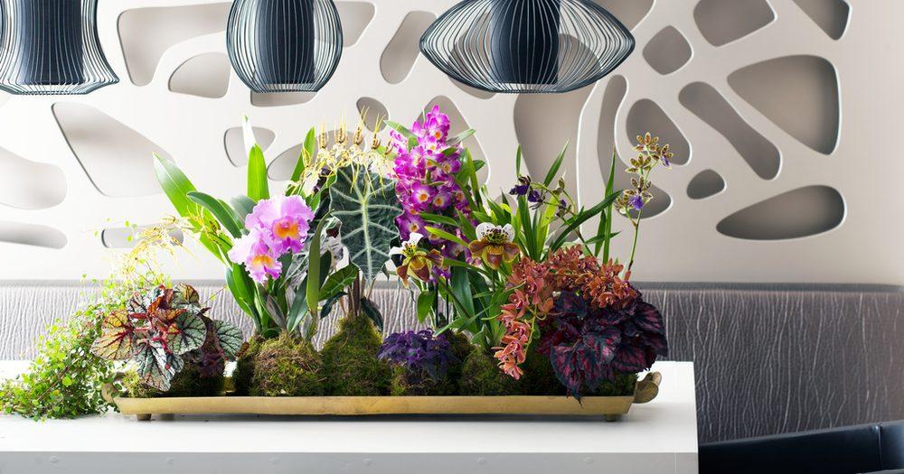 orchideeen-tafelstuk